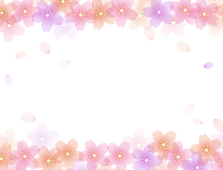 Cherry blossom background material 일러스트