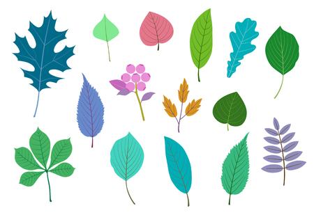 Leaf and fruit illustration set Foto de archivo - 117685257