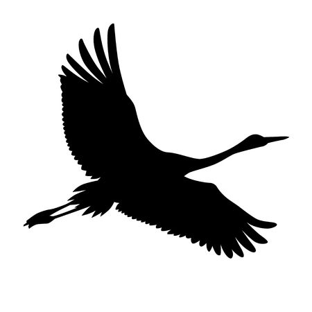 Flying crane silhouette