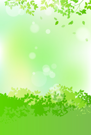 Fresh green and sun leaves landscape