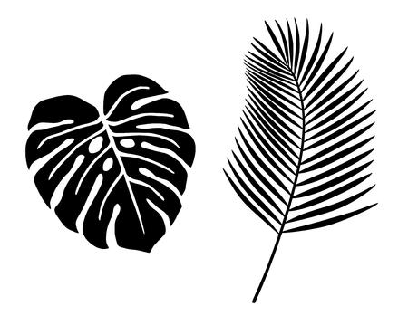 Tropical plant leaf icon set 일러스트