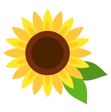 Sunflower icon in full bloom