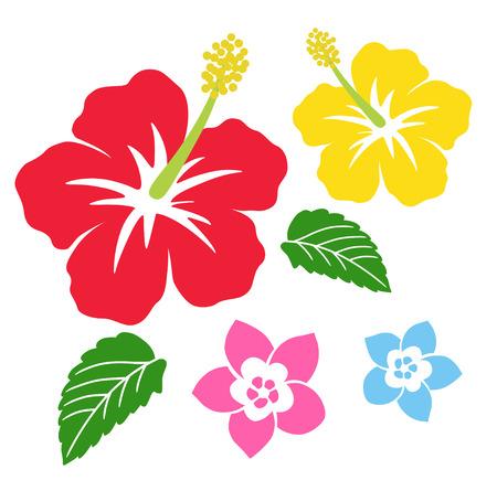 Icono de hibisco y plumeria