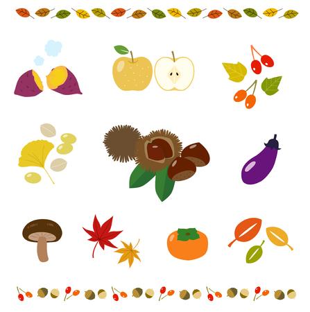 Autumn taste and decoration material set Ilustracja