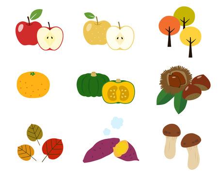 Autumn taste illustration material set