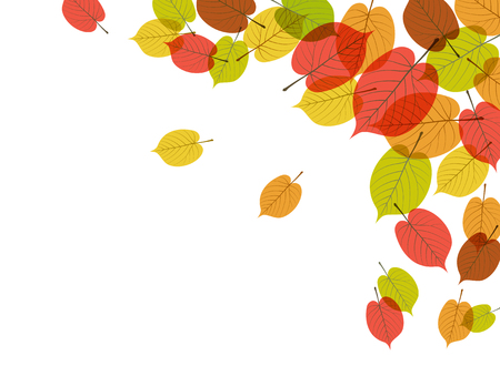 Colorful Autumn leaves background material