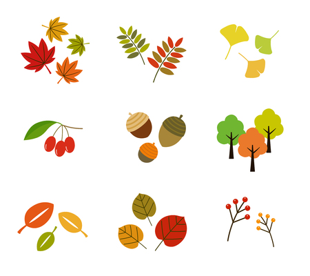 Colorful autumn leaves icon set