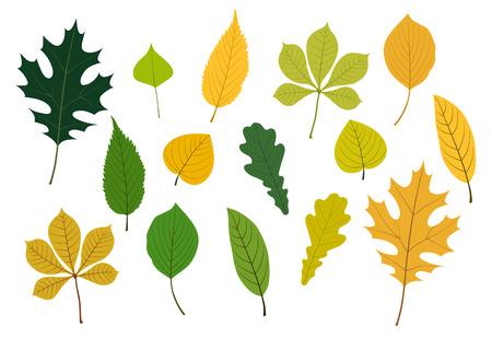 Colorful leaves Illustration icon set Ilustracja