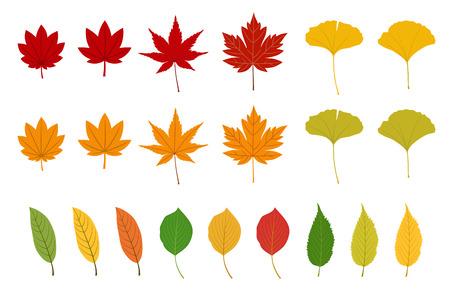 Colorful autumn leaves illustration set Ilustracja
