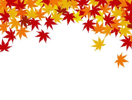Maple background background illustration material
