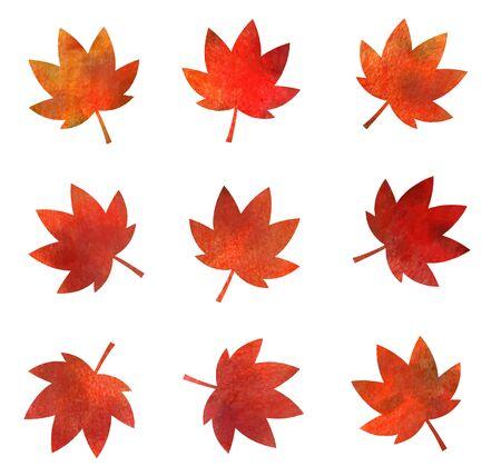 Textura de icono de hojas de otoño (lápiz de acuarela) Ilustración de vector