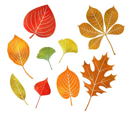 Various autumn leaves icon (watercolor pencil) Stock Illustratie