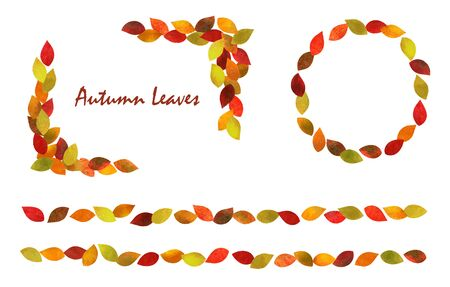 Autumn leaves Frame set (watercolor pencil texture)