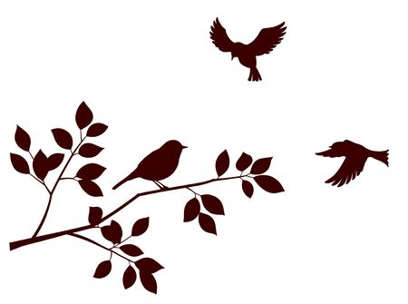 Flock of birds and tree branch