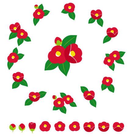 various camellia illustration icon set