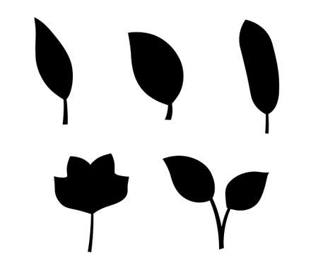 leaf illustration vctor icon set