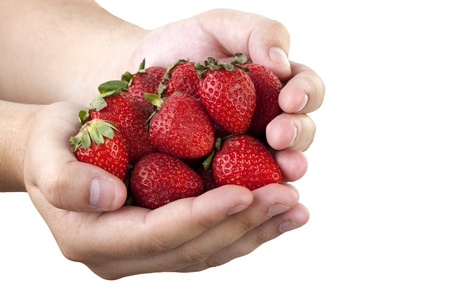 strawberrys in hand on white Stock Photo