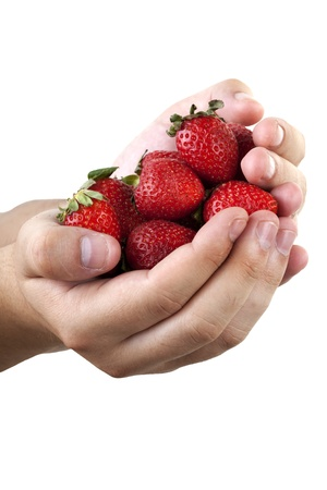 strawberrys in hand on white background Stock Photo