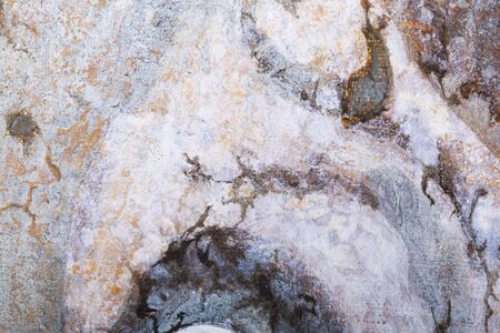 Grunge texture from oil on canvas Stock Photo - 17059498