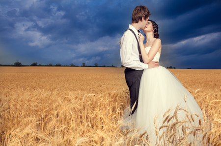brige: Young married couple in wheat field with beautiful blue sky. Brige and groom. Young happy family. Love and emotions Stock Photo