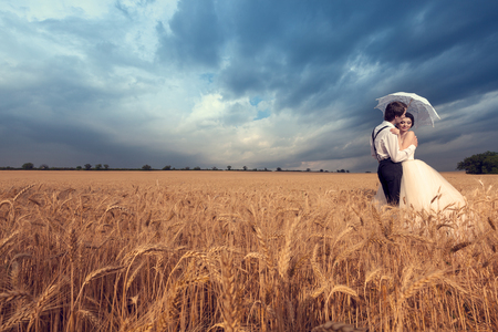 Groom kissing the bride in wheat field. Young woman in wedding dress. Wedding photography. Young in loved just married couple Stock Photo