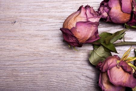 Dead roses on vintage wooden background in studio photo 写真素材