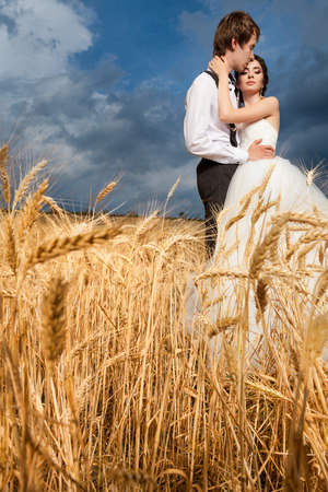 wedding photography: Bride and groom in tender hugs in wheat field with dramatic bkue sky in the back. Just married couple. Happines and love. Wedding photography
