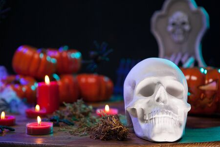 Menacing skull for halloween party sitting on a wooden table with scary pumpkin. Haunted human skull. Stock fotó