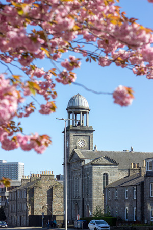 Colourful Blossom and church, Aberdeen, Scotland