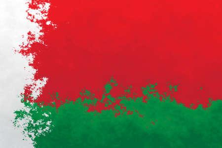 belarus: Belarus flag - grunge design pattern