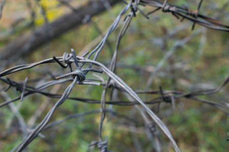 Old weathered barbwire on the battlefield