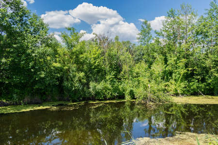 Small river in the walley on a summer sunny day Stock Photo