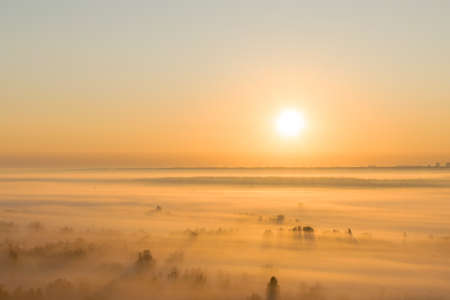 Sunrise in the valley with heavy fog on the ground between the trees