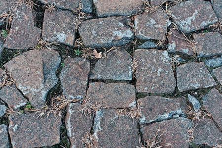 cobbles: old cobbles with grass
