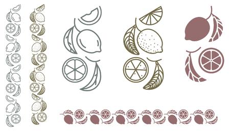 Lemon tree branch. Set of fruit monochrome ornament design elements Illustration