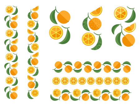 Orange tree branch. Set of fruit colored design elements