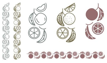 Orange tree branch. Set of fruit monochrome ornament design elements