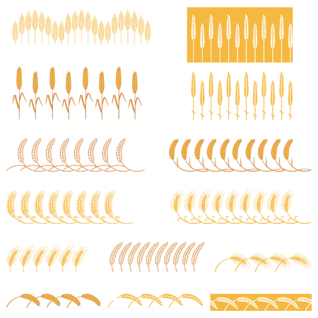 Strips ears of cereals plants. Set of stripes of repeating bunches of cereals