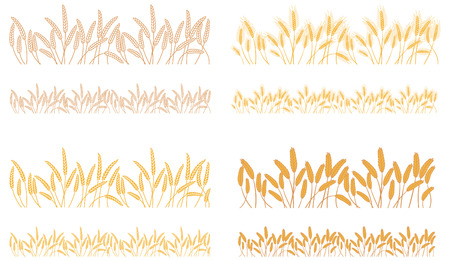 Strips waving ears of cereals. Set of stripes of repeating naturally crossed bunches of cereals
