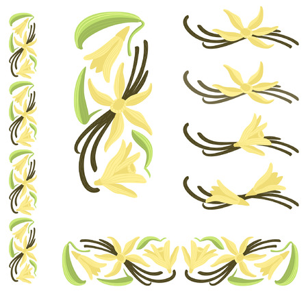 Vanilla dried pods with flowers and leaves. Multicolor decor elements.
