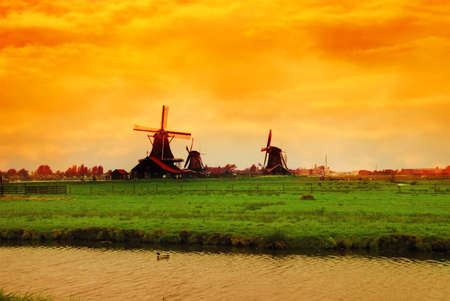 Beautiful sunset in Holland with a view at pasture with wind mills