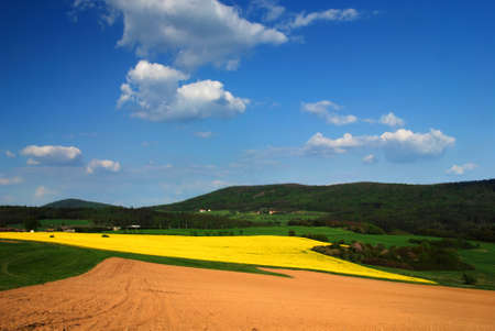 plough land: Beautiful spring landscape with rape field and a blue sky Stock Photo