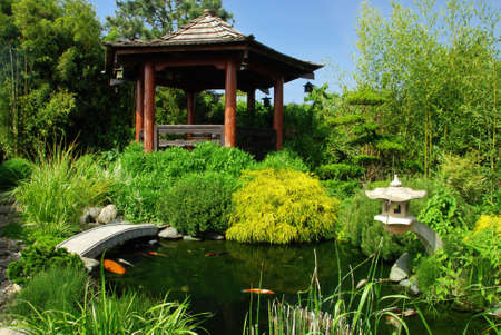 Beautiful Japanese garden with many plant pecies and water pond where you can see koi fish Stock Photo