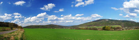 Wide panoramic view of a beautiful green spring field