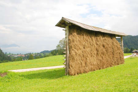 Hay dryers traditional construction in Slovenia