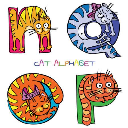 cat alphabet: cat alphabet n o p q