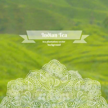 tea plantation: Vector ornate background of tea plantation