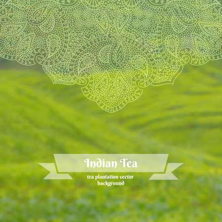 tea plantation: Vector blurred background of tea plantation