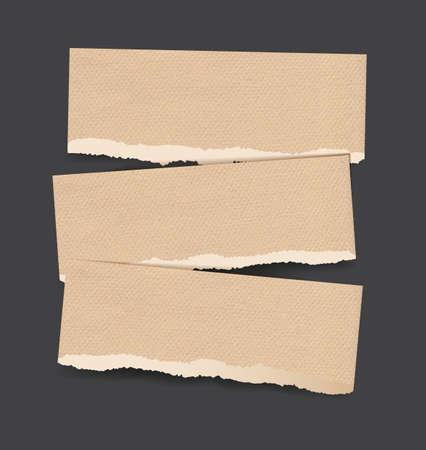 cartone strappato: Sfondi vettoriali impostato come strappati bandiere di carta realistici di marrone pergamena cartone