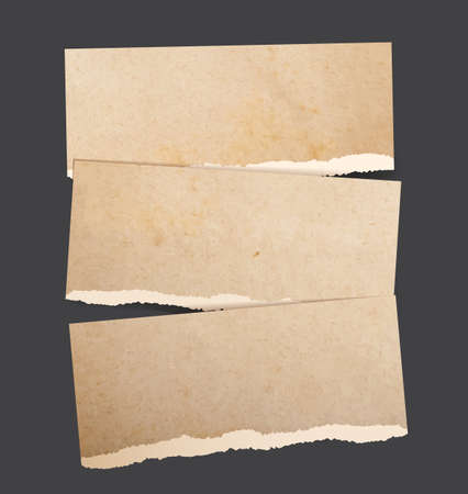 torn cardboard: Vector backgrounds set as torn realistic paper banners of brown parchment cardboard Illustration